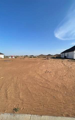 5709 118th, Lubbock, TX 79424 (MLS #202106479) :: Lyons Realty
