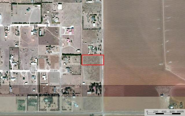 0 County Road 1600, Shallowater, TX 79363 (MLS #202106666) :: Reside in Lubbock   Keller Williams Realty