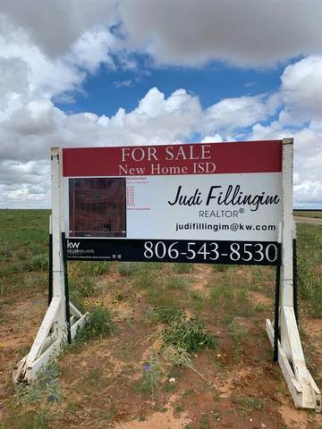 0 Farm Road 1317, New Home, TX 79383 (MLS #202106753) :: Duncan Realty Group