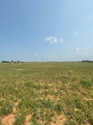 10528 Farm Road 1294, Shallowater, TX 79363 (MLS #202106049) :: Duncan Realty Group