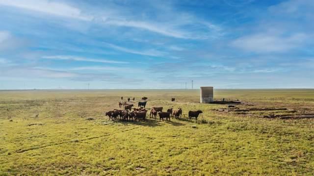 0-000 Farm Road 181, Floydada, TX 79235 (MLS #202107517) :: Reside in Lubbock   Keller Williams Realty