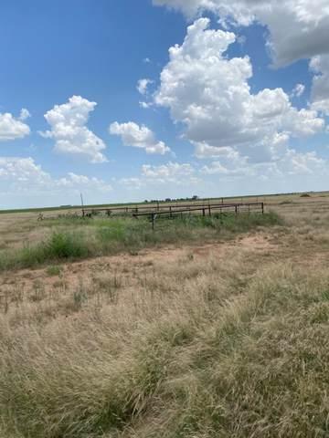 711 E Farm Road 1729, New Deal, TX 79350 (MLS #202107798) :: McDougal Realtors