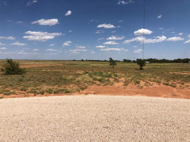 1512 Timmons Avenue, Ropesville, TX 79358 (MLS #202107818) :: The Lindsey Bartley Team