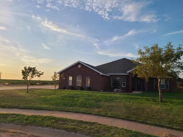 6608 Harvard Street, Lubbock, TX 79416 (MLS #202107869) :: Reside in Lubbock | Keller Williams Realty