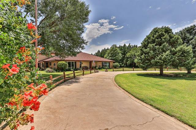 3501 County Road 7500, Lubbock, TX 79423 (MLS #202107706) :: Better Homes and Gardens Real Estate Blu Realty