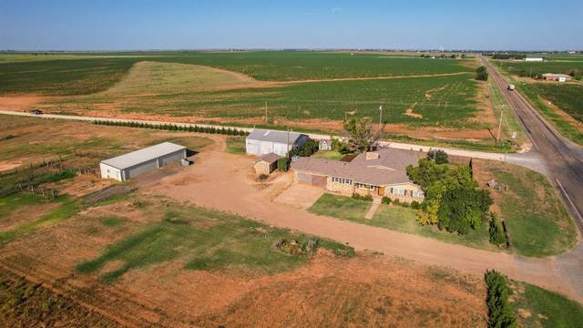 1522 Farm Road 37, Amherst, TX 79312 (MLS #202107868) :: Better Homes and Gardens Real Estate Blu Realty