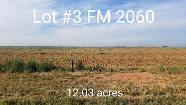 0-Lot 3 Farm Road 2060, Abernathy, TX 79311 (MLS #202108169) :: Better Homes and Gardens Real Estate Blu Realty