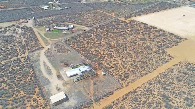 808 Farm Road 1264, Monahans, TX 79756 (MLS #202108313) :: Scott Toman Team