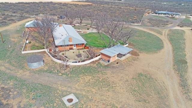 806 Farm Road 1264, Monahans, TX 79756 (MLS #202108035) :: The Lindsey Bartley Team
