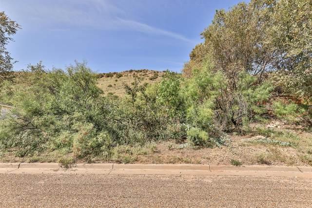 105 S Lakeshore Drive, Ransom Canyon, TX 79366 (MLS #202108327) :: Scott Toman Team
