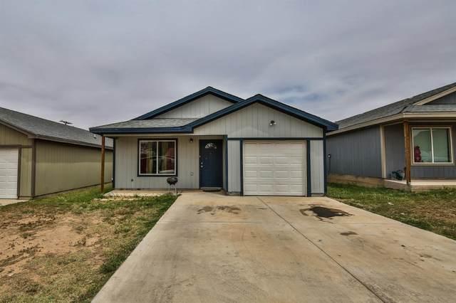 2205 Cedar Avenue, Lubbock, TX 79404 (MLS #202108504) :: Scott Toman Team
