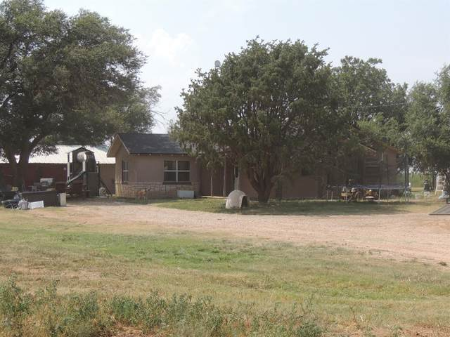 1990 County Road 155, Amherst, TX 79312 (MLS #202108514) :: Scott Toman Team
