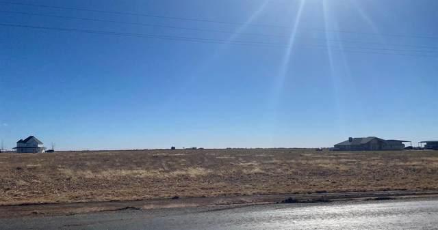 3616 E Farm Road 1729, Lubbock, TX 79403 (MLS #202108713) :: Scott Toman Team