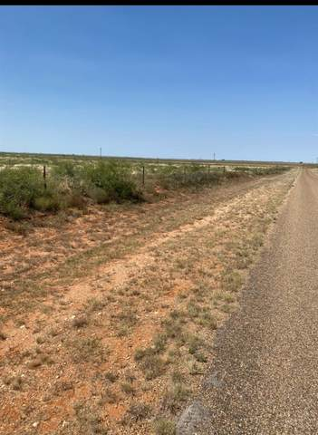 0 County Road 300, Plains, TX 79355 (MLS #202109131) :: Lyons Realty