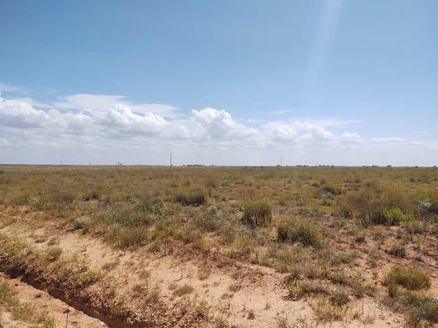 0 N County Road 155 Road, Brownfield, TX 79316 (MLS #202109270) :: Lyons Realty