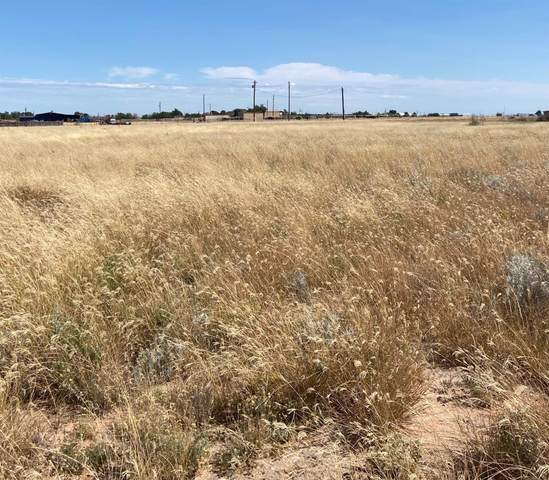 0 Macaw, Ropesville, TX 79358 (MLS #202109886) :: The Lindsey Bartley Team