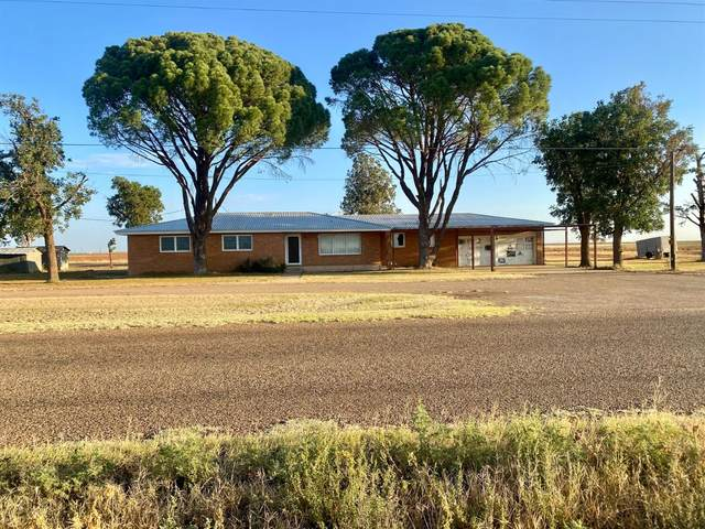779 County Road 132, Seagraves, TX 79359 (MLS #202110198) :: Better Homes and Gardens Real Estate Blu Realty