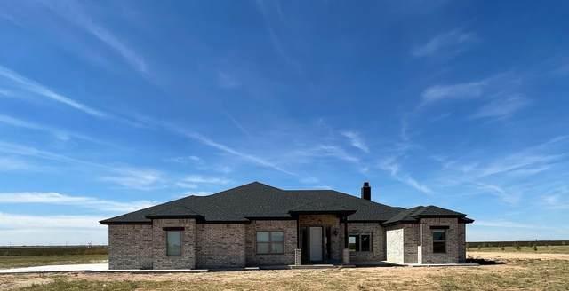12427 N Farm Road 179, Shallowater, TX 79363 (MLS #202110214) :: The Lindsey Bartley Team
