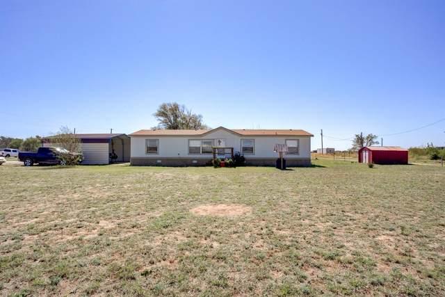 9901 County Road 6900, Lubbock, TX 79407 (MLS #202110261) :: Duncan Realty Group