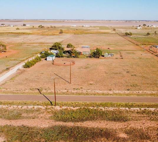 1749 Owl Road, Lubbock, TX 79407 (MLS #202110419) :: Stacey Rogers Real Estate Group at Keller Williams Realty