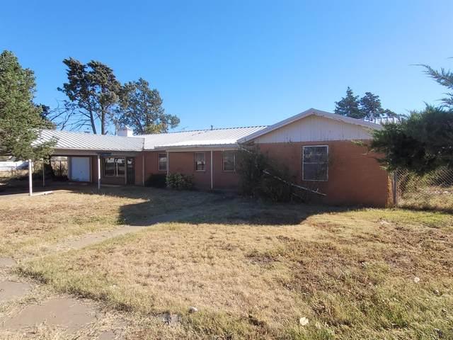 421 S Ayrshire, Crosbyton, TX 79322 (MLS #202110471) :: Rafter Cross Realty