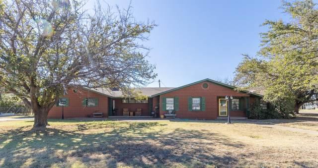 613 W 10th, Post, TX 79356 (MLS #202110485) :: The Lindsey Bartley Team