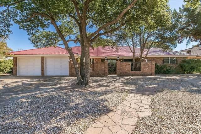 2025 Mustang Drive, Levelland, TX 79336 (MLS #202110629) :: Reside in Lubbock | Keller Williams Realty