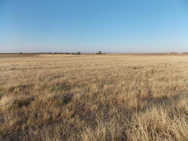 0 County Road 5500, Lubbock, TX 79403 (MLS #202110682) :: The Lindsey Bartley Team