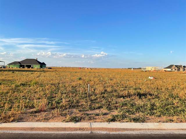 9202 County Road 6875, Lubbock, TX 79407 (MLS #202110704) :: Better Homes and Gardens Real Estate Blu Realty