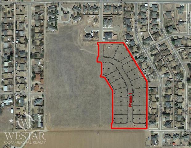 79329 9th Place, Idalou, TX 79329 (MLS #201401713) :: Lyons Realty