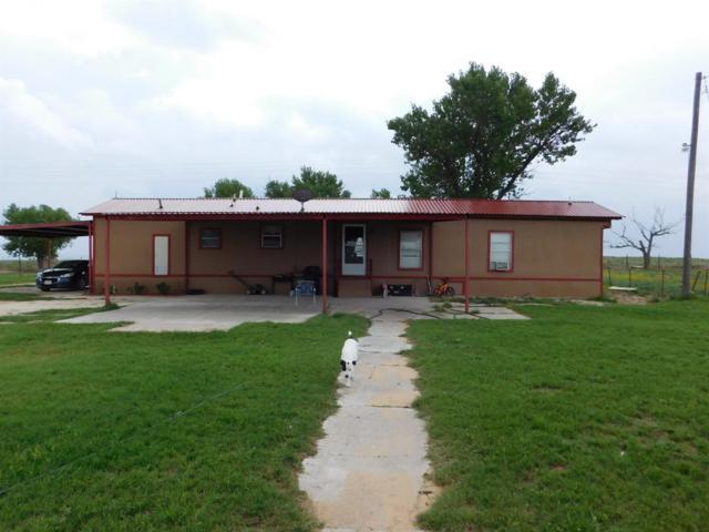 1689 County Road 1090, Muleshoe, TX 79347 (MLS #201606531) :: Lyons Realty
