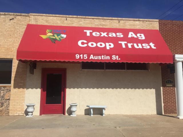 915 Austin Street, Levelland, TX 79336 (MLS #201701168) :: Lyons Realty
