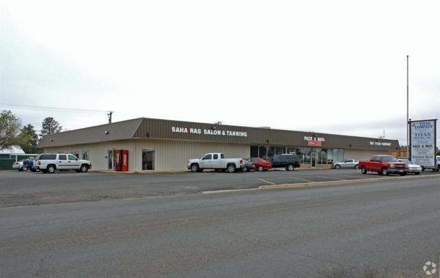 304 Austin Street, Levelland, TX 79336 (MLS #201706464) :: Lyons Realty