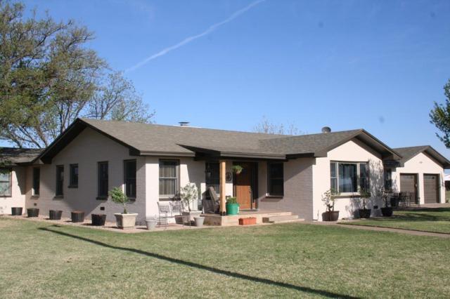 11005 N Farm Road 1729, Idalou, TX 79329 (MLS #201706685) :: Lyons Realty