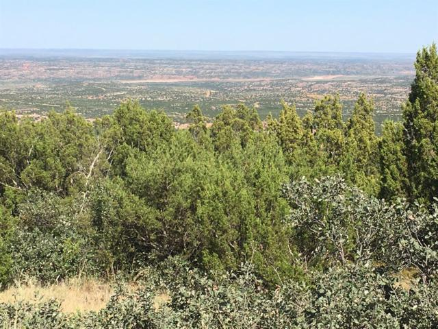 0 County Road O, Other, TX 79257 (MLS #201707794) :: Lyons Realty