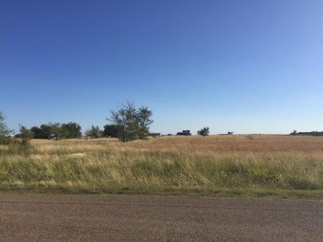 8005 Woodrow Road, Wolfforth, TX 79382 (MLS #201707963) :: Lyons Realty