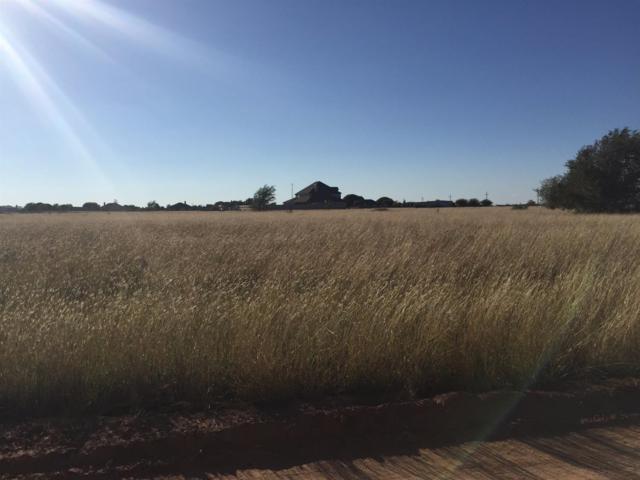 7900-2 Woodrow Road, Wolfforth, TX 79382 (MLS #201707972) :: Lyons Realty