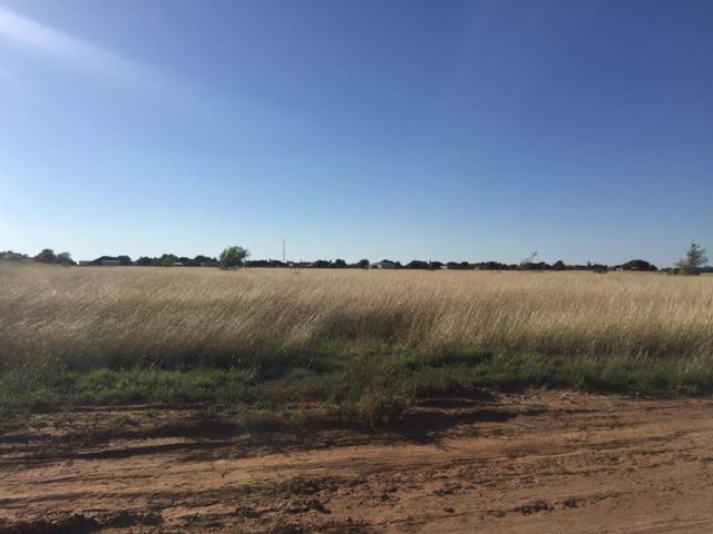 7900-5 Woodrow Road, Wolfforth, TX 79382 (MLS #201707973) :: Lyons Realty