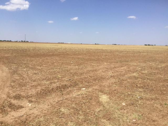 18402-Tract 3 County Road 2300, Lubbock, TX 79423 (MLS #201800531) :: Lyons Realty