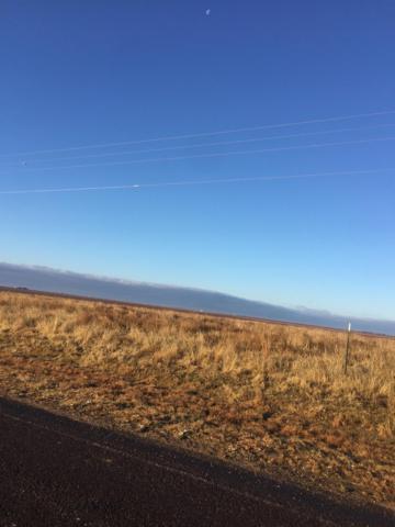 0 Farm Road 1730, New Home, TX 79383 (MLS #201800551) :: Reside in Lubbock | Keller Williams Realty