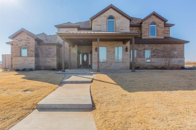 3905 140th Street, Lubbock, TX 79423 (MLS #201801110) :: Lyons Realty