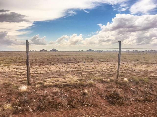 672 County Road M, Lubbock, TX 79383 (MLS #201801832) :: Lyons Realty