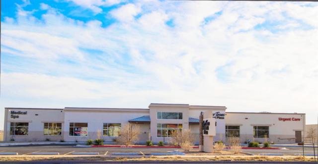 1605 W 5th Street, Plainview, TX 79072 (MLS #201802114) :: Lyons Realty