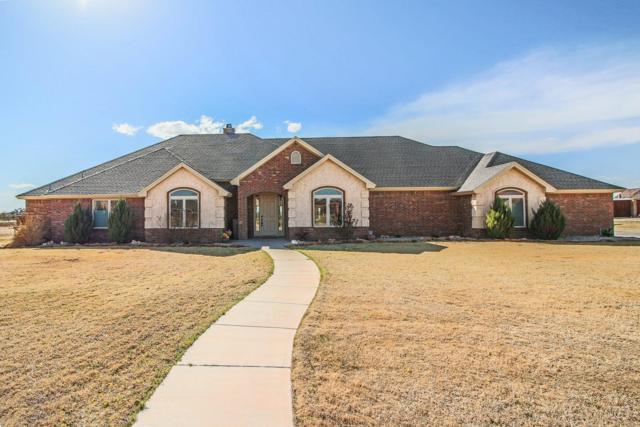 15610 County Road 1810, Lubbock, TX 79424 (MLS #201802304) :: Lyons Realty