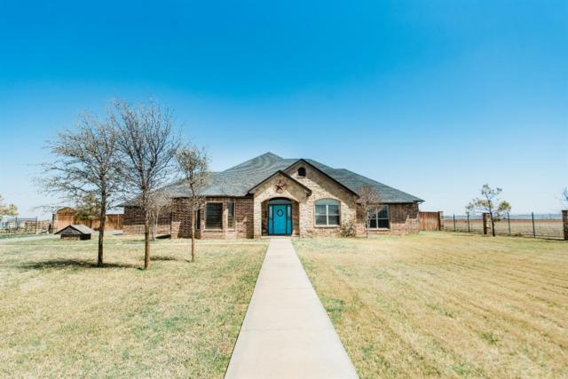 6796 Trump Court, Ropesville, TX 79358 (MLS #201802988) :: Lyons Realty