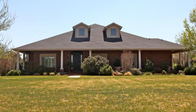 5503 County Road 7520, Lubbock, TX 79424 (MLS #201803401) :: Lyons Realty