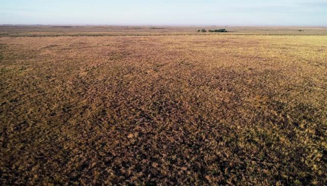 Muleshoe, TX 79347 :: Lyons Realty