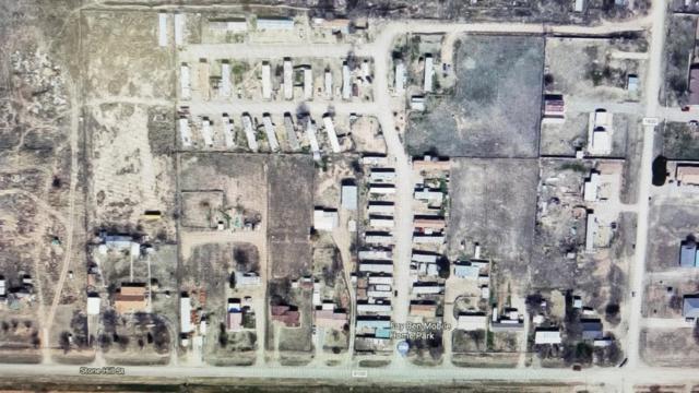 7346 County Road 6100, Shallowater, TX 79363 (MLS #201804492) :: Lyons Realty