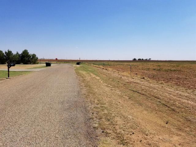 0 Mallard, Ropesville, TX  (MLS #201804880) :: Lyons Realty