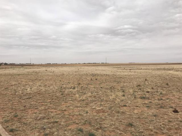 18915 S County Road 2300, Lubbock, TX 79424 (MLS #201805012) :: Lyons Realty